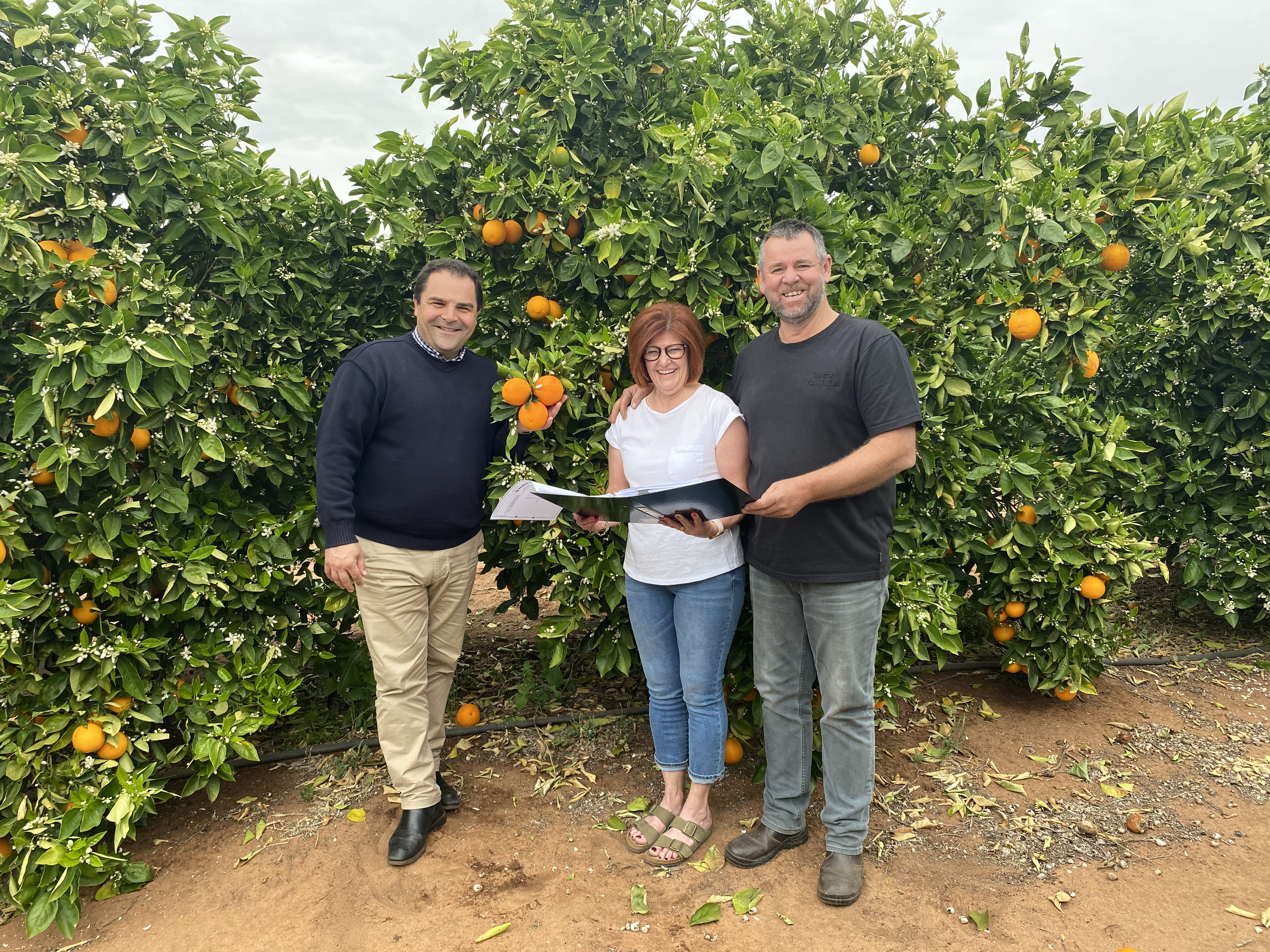 FEDERAL GOVERNMENT ROLLS OUT THE NETTING FOR FRUIT GROWERS